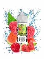 Buy Watermelon Wild Berries Mint Kiwi 100 ml E-liquid in our